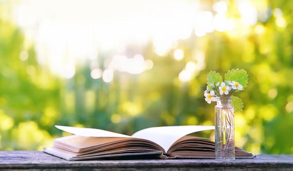 livre ouvert